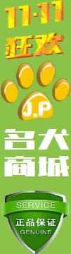 名犬商城_买狗更划算、卖狗更正规、选狗更方便!