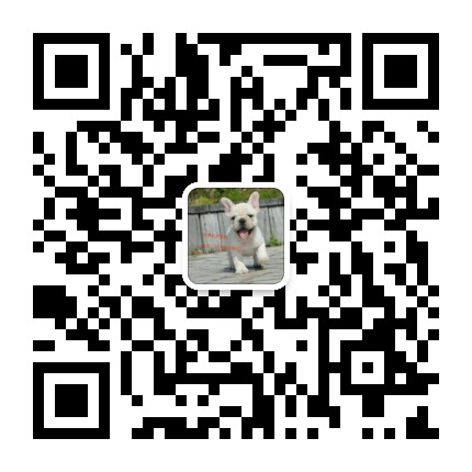 云南禄劝卖杜宾禄劝养殖基地长期出售纯种杜宾微信二维码