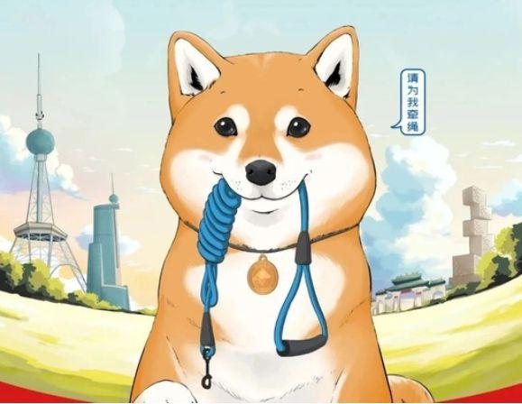 紧急提醒!5月1日起遛狗不拴绳或不佩戴犬牌将涉嫌违法