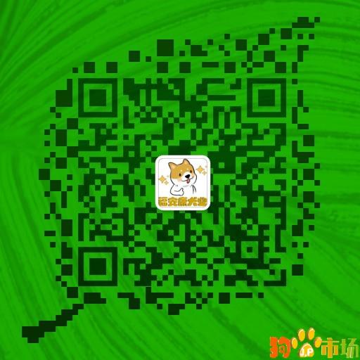云南普洱地区买马犬小狗哪里有卖纯种马犬幼犬出售